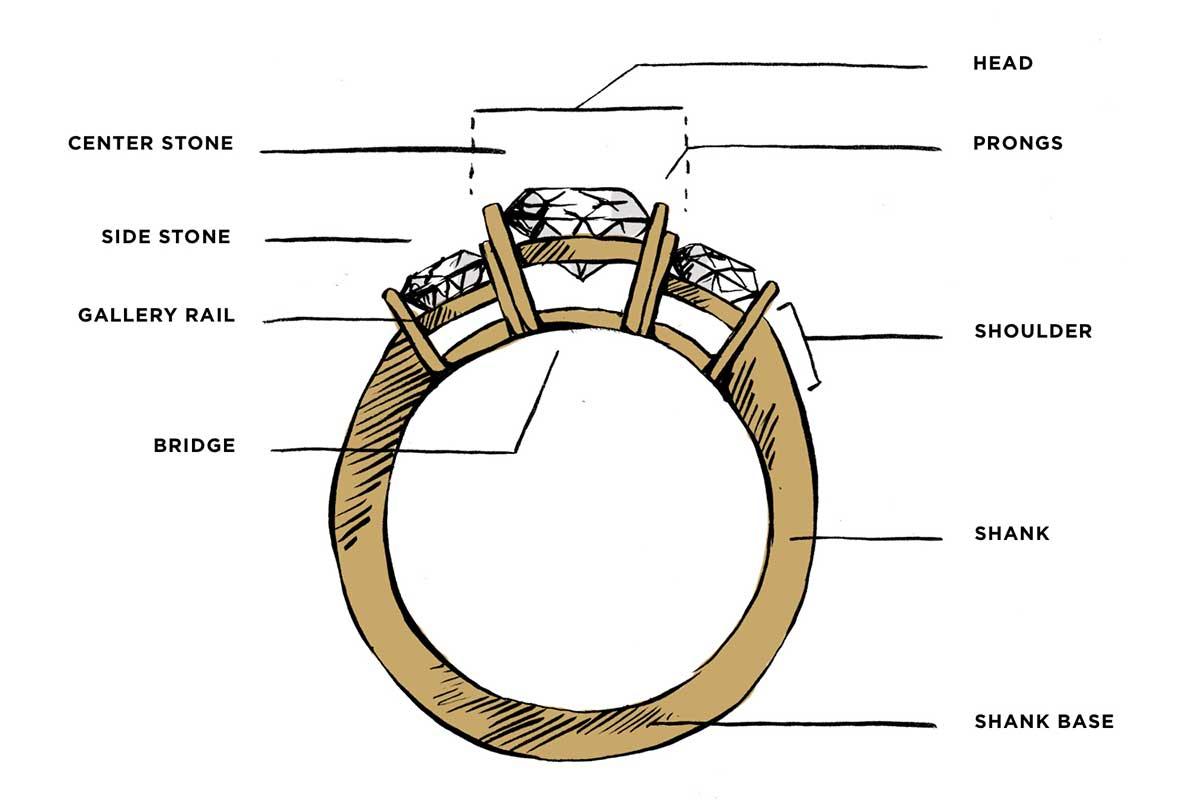 Ring Anatomy